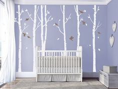 Hey, I found this really awesome Etsy listing at https://www.etsy.com/listing/255838147/birch-tree-wall-decals-birch-trees