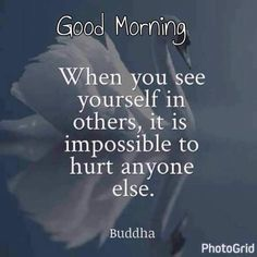 Morning Greetings Quotes, Good Morning Messages, Good Morning Wishes, Night Wishes, Morning Images, Happy Quotes, Best Quotes, Life Quotes, Buddhist Wisdom