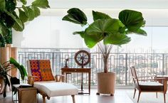 Balcony Decor Ideas Daybed Large Exotic Plants - Home Decor Design Outdoor Furniture Sets, Decor, Home And Garden, Balcony Decor, Home Garden Design, Decor Design, Outdoor Space, Patio Inspiration, Home Decor
