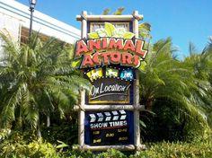 Animal Actors on Location at Universal Studios Florida - Universal . Universal Studios Florida, Disney Universal Studios, Universal Parks, Orlando Studios, Orlando Theme Parks, Island Of Adventure Orlando, Orlando Holiday, Park Signage, Florida Vacation