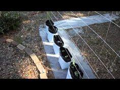 Starting A Grow Bag Garden With Coco Coir PART 2 - YouTube