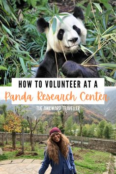 Looking to ethically volunteer in China? Check out a Panda Volunteer Program to get up close to China's cutest mascots, as well as tips for a great experience! #pandas #pandaresearchcenter #pandabase…  More China Travel Guide, Asia Travel, Travel Usa, Travel Abroad, Volunteer Programs, Volunteer Work, How To Speak Chinese, Travel Guides, Travel Tips