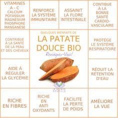 PATATE DOUCE   Le Monde s'éveille