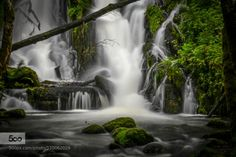 Welcome to the Jungle by igster999  Bergen Falls Forest Landscape Long Exposure Nature Norway River Waterfall Welcome to the Jungle igst