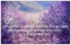 Afrikaanse Inspirerende Gedagtes & Wyshede: Liefde is al wat ons het, die enigste manier hoe o. Afrikaans Quotes, Hoe, Sayings, Canvas, Tela, Lyrics, Canvases, Quotations, Idioms