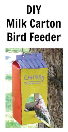 Turn an old milk carton into a bird feeder. The kids will love this one!