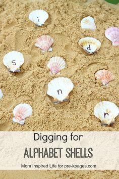 Ocean Theme Alphabet Shells Sensory Bin for learning the alphabet