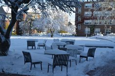 Autumn Snow at the College of the Holy Cross, Worcester, MA
