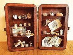 Miniature fake fossil, mini bones zoo fantasy, polymer ossuary in ...