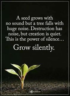 """""""A seed grows with no sound, but a tree falls with huge noise. Destruction has noise, but creation is quiet. This is the power of silence . Spiritual Quotes, Wisdom Quotes, True Quotes, Great Quotes, Words Quotes, Quotes To Live By, Positive Quotes, Motivational Quotes, Inspirational Quotes"""