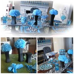Black and Turquoise Party Decorations Zebra Print Party Supplies