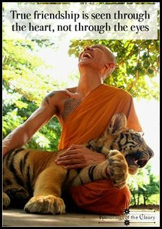 Monk with tiger ~ Laughter from deep within= Complete, utter joy. Yoga Studio Design, Tier Fotos, Mundo Animal, Happy People, People Around The World, Big Cats, Belle Photo, Beautiful World, Beautiful Creatures