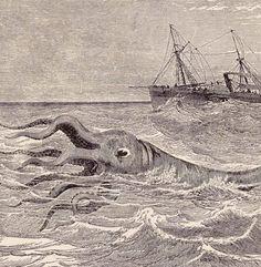 1892 'Hideous Sea Monster Of The Deep' - Victorian Steel Engraving Le Kraken, Fantasy Creatures, Mythological Creatures, Sea Serpent, Etching Prints, Sea Monsters, Dark Ages, Vintage Ephemera, Natural Wonders