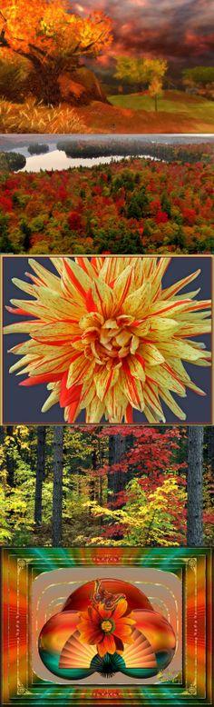 autumn, colors, michigan, season