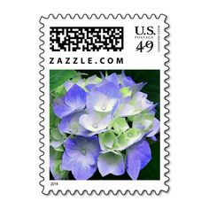 """Hydrangea floral postage stamps in a deep periwinkle (blue purple) and green. A """"fresh picked"""" look for every day postage and perfect for engagement, wedding, bridal shower, vow renewal, and anniversary invitations, announcements, save the dates, and thank you cards. #periwinkle #blue #purple #green #hydrangea #floral #postage #stamps #stamp #postal #flower #flowers"""