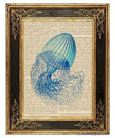 Jellyfish Art Print on Antique Book Page Vintage Illustration Leptomedusae 1