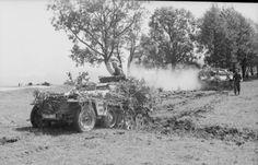 """Juni 1941 Rußlandfeldzug.- """"Unternehmen Barbarossa"""". Mit Buschwerk getarnter leicher Schützenpanzer (Sd.Kfz. 250) und Panzer in Fahrt über offenes Gelände"""