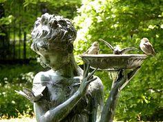 The birds love this garden