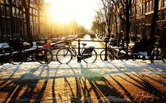 Our Amsterdam expert Rodney Bolt suggests what to see and do in the city this   winter