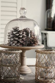 Gotta start collecting pinecones :)