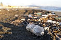 Think twice before you throw plastic in the garbage. It may come back to bite you.