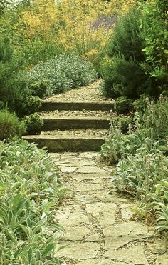 stepped path through informal planting in a garden by Acres Wild, England
