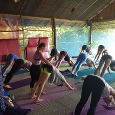 Join us at Vikasa for yoga teacher training Koh Samui, to embark on a journey of transformation from student to fully-certified yoga instructor. Enquire today!