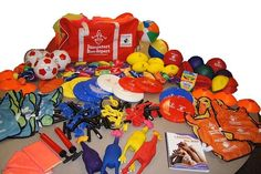 Active Living After School (ALAS) Activity Kit Physical Education Curriculum, Health And Physical Education, Ministry Of Education, Student Engagement, Learning Environments, After School, Bowser, Kit, Teaching