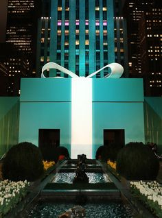 Tiffany & Co. Magnificent Blue Box - NYC Rockefeller Center