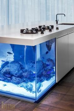Nautical Theme For Modern Kitchen Layout With Aquarium Kitchen Island.Nautical theme comes in a variety of looks. An aquarium built into a kitchen island is a inventive and uncommon way to deliver an exciting nautical theme into present day kitchen style. #kitchen #kitchendesign #naturalkitchen #kitchendecor