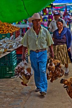 Chickens for the Market, Mexico