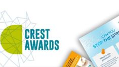 STEM challenges perfect for CREST Awards
