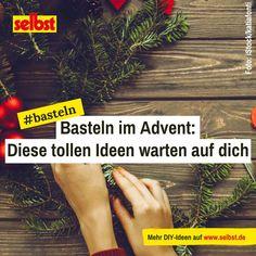 #Advent, Advent, ein #Lichtlein brennt – die #Adventszeit ist die Zeit der #Vorfreude. Mit #festlichen #Bastelideen für den Advent entkommen Sie dem #vorweihnachtlichen Trubel und versüßen sich die Wartezeit bis #Weihnachten. #basteln #ideen #deko Diy, Kids Fun, Bricolage, Diys, Handyman Projects, Do It Yourself, Crafting