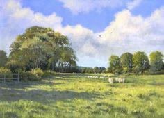 Dorset Pasture