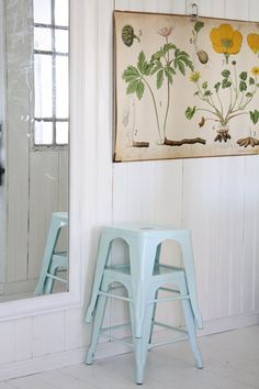 TREND: INTERIORS WITH VINTAGE BOTANICAL PRINTS | THE STYLE FILES