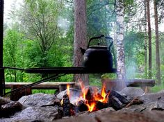 Tuli räiskyy nuotiossa… | Suomen Luonto Camping And Hiking, Camping Life, Finland Summer, Information Center, Good Neighbor, Coffee Is Life, Outdoor Life, Nature Pictures, In This Moment