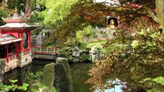 The Lime Avenue at Biddulph Grange Garden  Step into the oriental world as you enter the Chinese-inspired garden