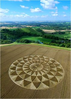 A petal formation appear at Oare in Wiltshire, England, UK. 2007.
