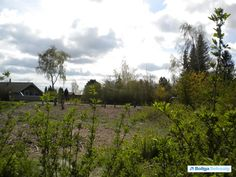 Åsen 16, 4070 Kirke Hyllinge - Byggemodnet fritidsgrund #fritidsgrund #Ejby #Kirkehyllinge #byggegrund #selvsalg #boligsalg #boligdk
