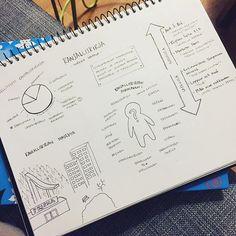 Huomenna piirretään luetusta kirjasta infografiikkaa. Ope tekee mallia. #iltavuoro #opehommat #infographic #drawing 📚📚📚 ➡️✏️📊