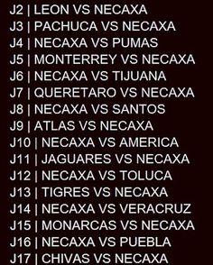 dos veces vendrá a Jalisco el @clubnecaxa