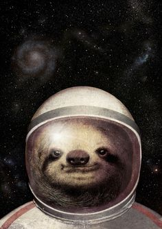 Space Sloth  (For Sale)