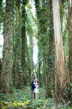 Engagement session in the Presidio of San Francisco | Engagement Photography