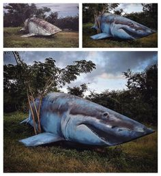 Street Art by Xanoy – Blue Shark Boat Street Art Utopia, Blue Shark, Istanbul, Whale, Boat, Fish, Sharks, Animals, Dinghy