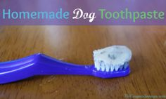 homemade dog toothpaste recipe