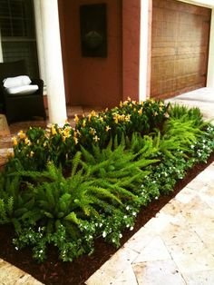 Regular Mondo grass with variegated Liriope form a simple modern ...