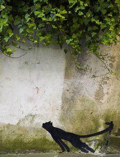 Kitteh Graffiti - Cat Street Art From Around the World, Part IV Graffiti Artwork, Street Art Graffiti, Black Cat Art, Black Cats, Black Kitty, Miami Street Art, Space Artwork, Street Gallery, Stencil Art
