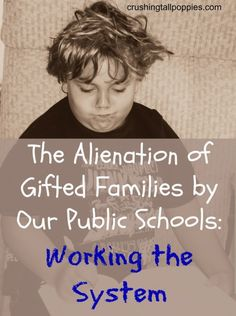 The Alienation of Gifted Families by Our Public Schools: Working the System