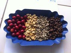 Rwandan Heirloom Bourbon Coffee from cherry to roast