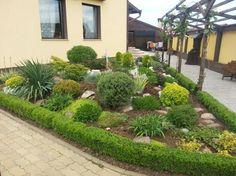 Einen kleinen Steingarten im Vorgarten gestalten